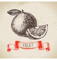 Hand drawn sketch fruit orange Eco food vector image vector image