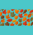 leaf fall seamless background autumn concept vector image