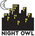 Night Owl vector image vector image