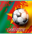 soccer ball on cameroon flag background vector image vector image
