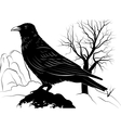 With Raven on a rock on a background vector image