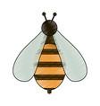 cute bee symbol vector image vector image