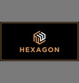 nw hexagon logo design inspiration vector image vector image