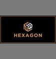 nw hexagon logo design inspiration vector image vector image