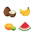 set delicious organic fruit tropical nutrition vector image vector image