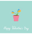 Tulip in pot Happy Valentines Day vector image vector image