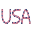 USA inscription made from USA flags vector image vector image