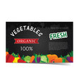 vegetable banner vector image vector image