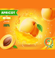 apricot fruit in juice splash advertising poster vector image vector image