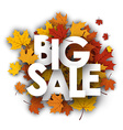 Big sale background with maple leaves vector image vector image