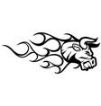 bull grill fire logo branding vector image