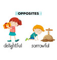 english opposite word of delightful and sorrowful vector image vector image