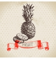 Hand drawn sketch fruit pineapple Eco food vector image vector image