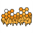 honeycomb icon design on white background vector image