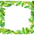 square frame made various leaves in watercolor vector image vector image