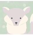 Cute polar white baby fox on green Christmas card vector image vector image