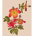 Hibiscus Flower Sketch vector image vector image