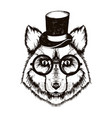 hipster fox muzzle wearing top hat and glasses vector image vector image