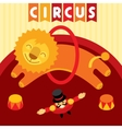 Jumping lion in circus Animal trainer and lion vector image