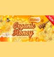 natural organic honey banner vector image vector image