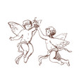 pair of flying cupids or angels carrying bunch vector image