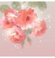 Shining flowers roses vector image