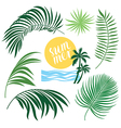 Tropic Collection tropical leaves set vector image vector image