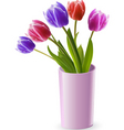 tulips in a pink vase vector image vector image
