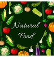 Vegetables Natural food banner of vegetable icons vector image vector image