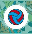 voleyball sport ball vector image vector image