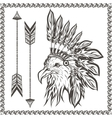 American Eagle in ethnic Indian headdress vector image vector image