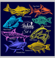 american fish - set 4 for creative design vector image vector image