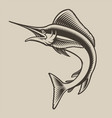 black and white sea marlin in style vector image