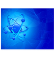 central nucleus vector image vector image
