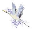 crane a bird in flight design element vector image