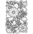 Hand drawn patterns with flowers Ornate patterns vector image vector image