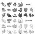 herb and spices monochrom icons in set collection vector image vector image