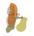 inscription pineapple vector image