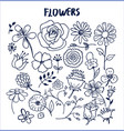 set hand drawn flowers vector image