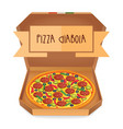 the real pizza diabola italian pizza in box vector image vector image