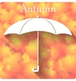 Umbrella icon on autumn background vector image vector image