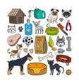 hand drawn cats and dogs vector image