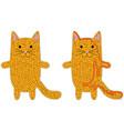 cat maze vector image vector image