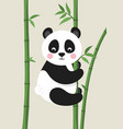 cute panda bear on bamboo branch vector image vector image
