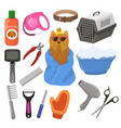 grooming pet dog accessory or animals tools vector image