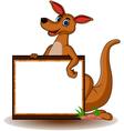kangaroo with blank board vector image vector image