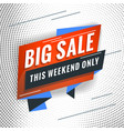 big sale promotional concept template for banner vector image