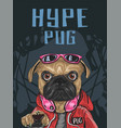 hype style pug dog wear red jacket sweeter vector image