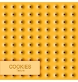 modern cookie texture Food background vector image