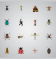 realistic damselfly arachnid bee and other